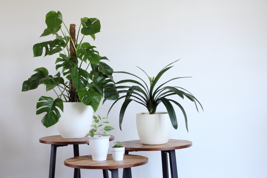 tips-for-minimal-house-decorating-03