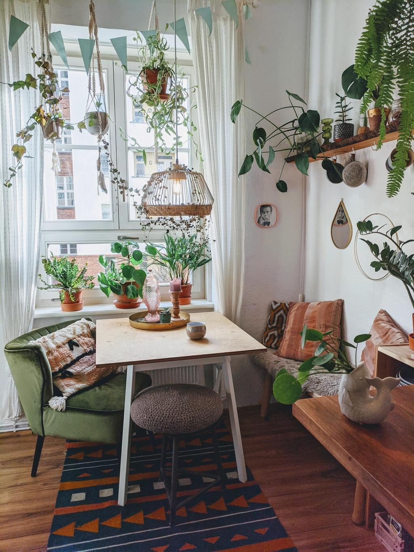 ห้องรับแขกสวยๆ แบบที่ 4 ห้องรับแขกแนวจังเกิล (Jungle) สำหรับคนรักต้นไม้